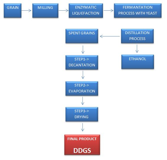 DDGS MANUFACTURING PROCESS FLOW CHART