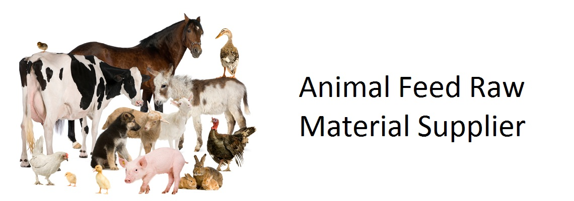 Animal Feed Raw Materials